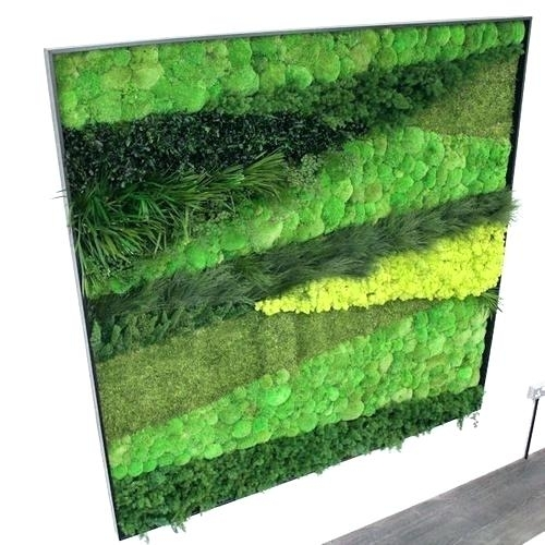 Moss Wall Art Diy Fern And Moss Wall Art More Preserved Moss Wall For Moss Wall Art (Image 17 of 25)