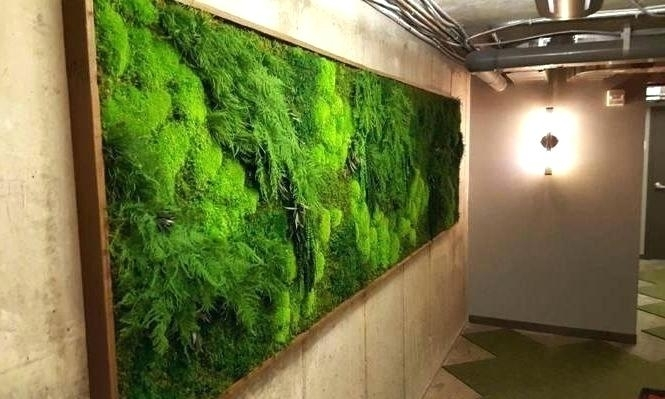 Moss Wall Art Diy Moss Wall Art Artisan X Plant No Care Green Moss Inside Moss Wall Art (Image 18 of 25)