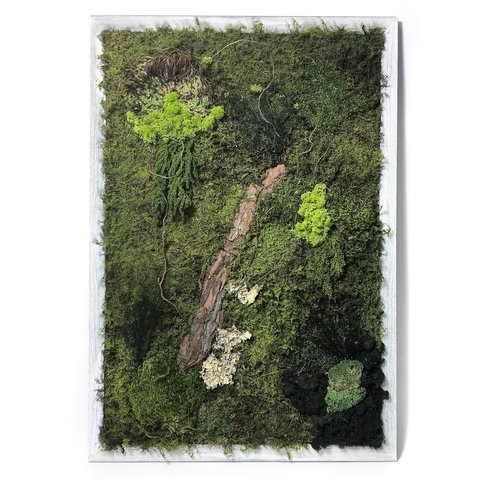 Moss Wall Art | Luludi Living Art | Ahalife Pertaining To Moss Wall Art (Image 13 of 25)