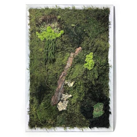 Moss Wall Art | Luludi Living Art | Ahalife Pertaining To Moss Wall Art (View 10 of 25)
