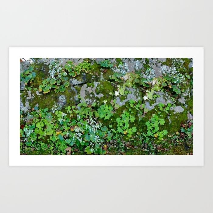 Moss Wall Art Printbirifoxi | Society6 Regarding Moss Wall Art (View 20 of 25)