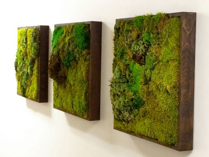 Moss Walls: The Newest Trend In Biophilic Interiors | Art 3 X In Green Wall Art (View 18 of 25)