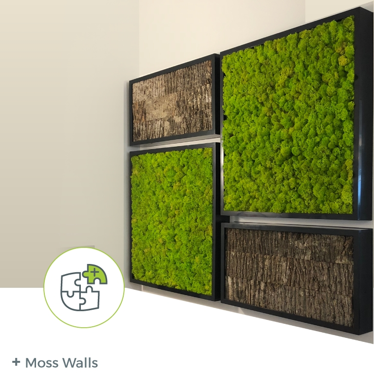 Option: Moss Wall – Natura – Enhancing The Built Environment For Moss Wall Art (Image 22 of 25)