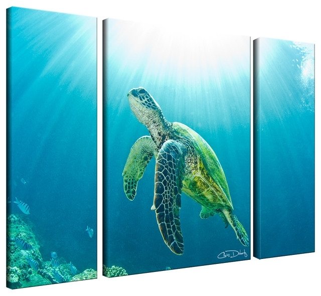 Ready2Hangart Christopher Doherty 'sea Turtle' Canvas Wall Art (3 With Regard To Sea Turtle Canvas Wall Art (View 2 of 25)