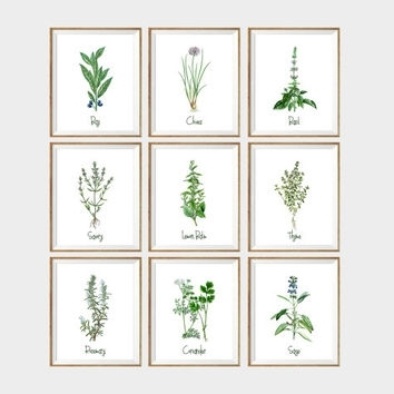 Shop Herb Wall Art On Wanelo With Regard To Herb Wall Art (Image 19 of 20)