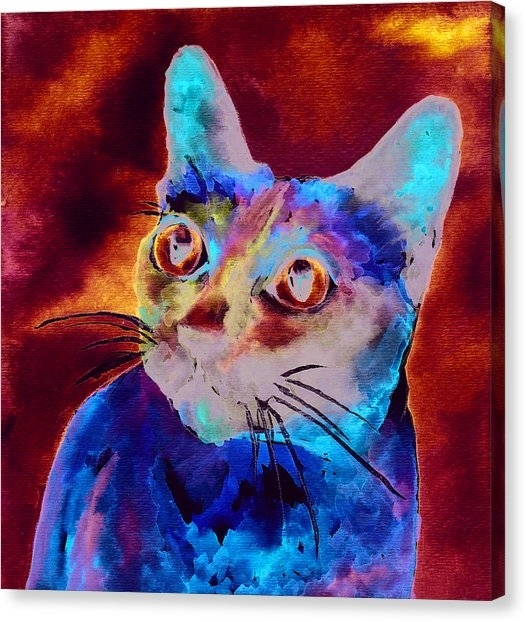Siamese Cat Canvas Prints | Fine Art America Intended For Cat Canvas Wall Art (Image 21 of 25)