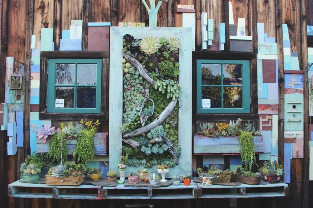 Succulent Cafe Oceanside: A Living Masterpiece — Needles + Leaves Within Succulent Wall Art (Image 15 of 25)