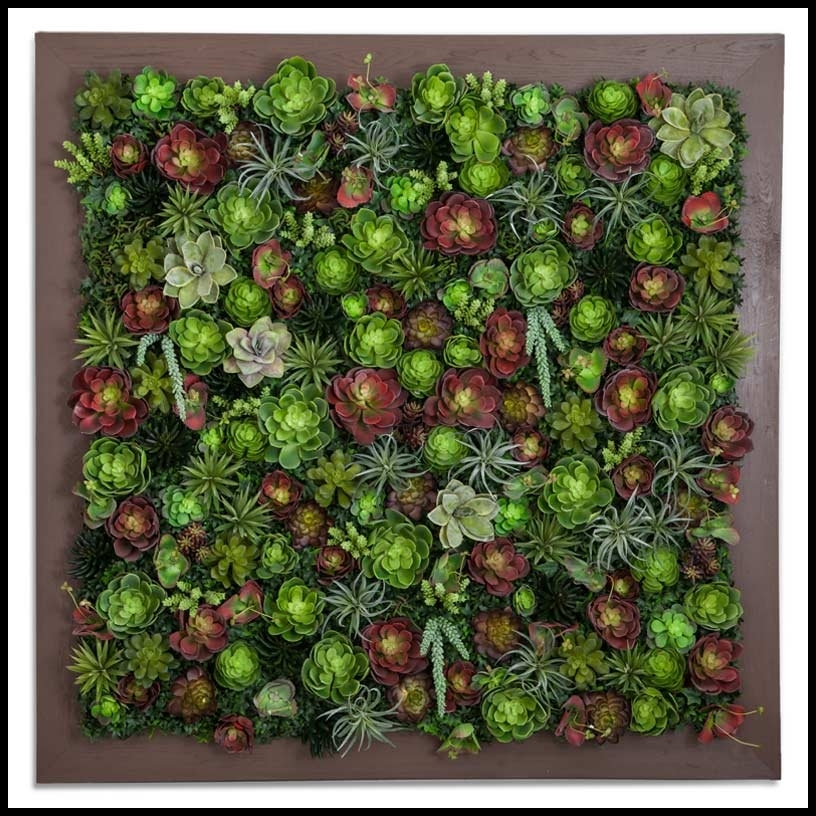 Succulent Living Wall 48Inl X 48Inh Within Succulent Wall Art (Image 17 of 25)