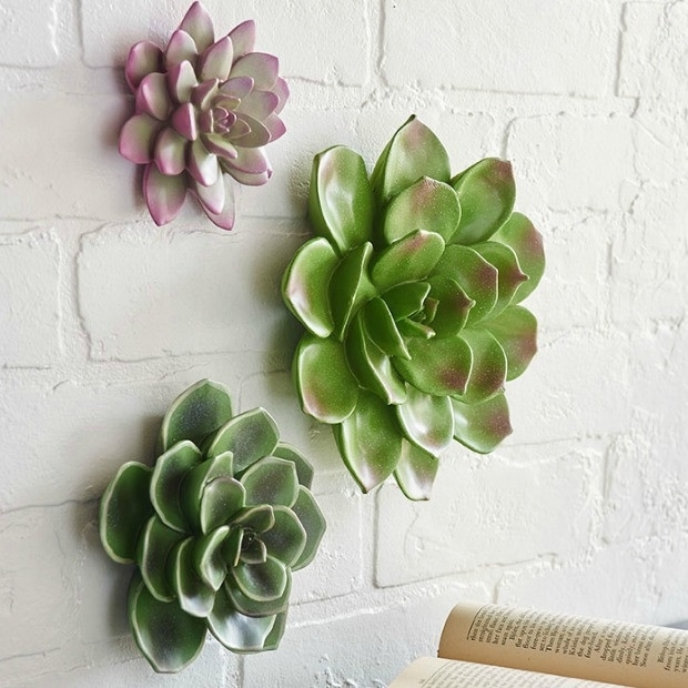 Succulent Wall Art, Set Of 3 | Antique Farmhouse Within Succulent Wall Art (Image 20 of 25)