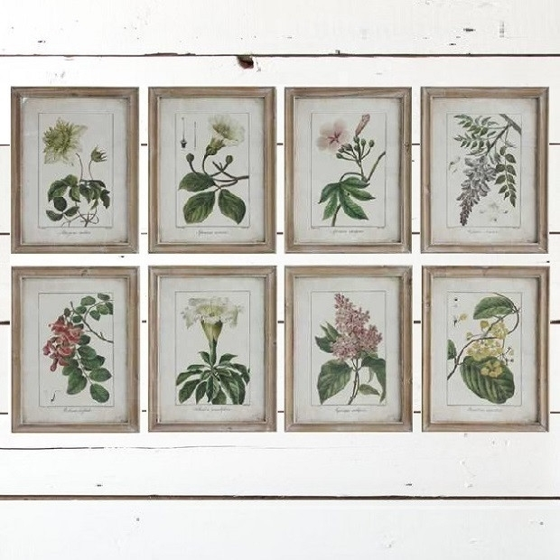 Vintage Style Framed Flower Wall Art, Set Of 8 | Antique Farmhouse Within Vintage Wall Art (View 2 of 10)