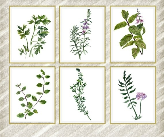 Watercolor Herbs Print: Herb Wall Art Kitchen Wall | Etsy Regarding Herb Wall Art (Image 20 of 20)