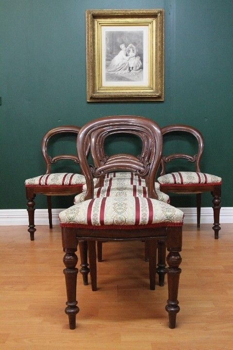 Antique Dining Chairs Ebay | Antique Australian Colonial Cedar Set Regarding Dining Chairs Ebay (Image 5 of 25)