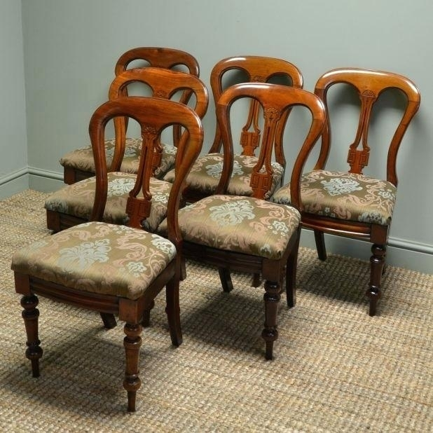 Dining Room Chairs Ebay Splendid Antique Walnut Dining Chairs Set Of Intended For Dining Chairs Ebay (View 23 of 25)