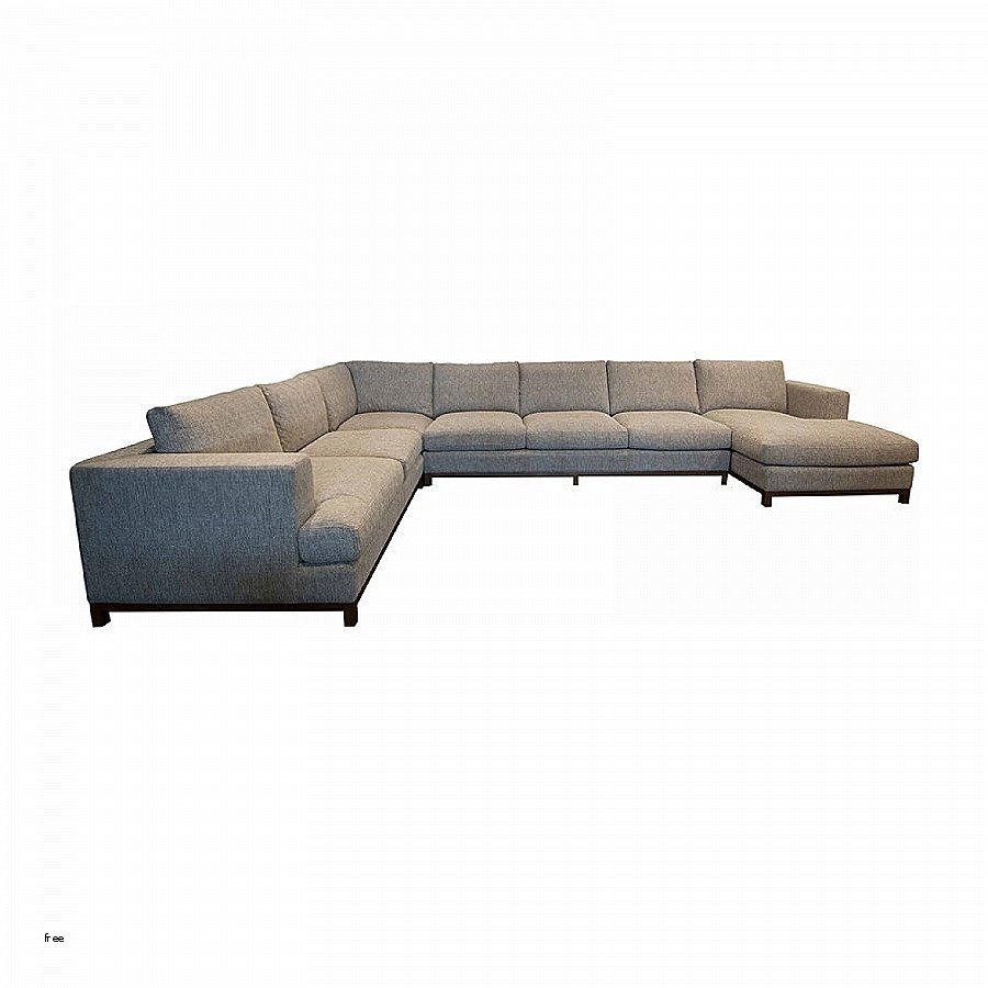 Inspirational Sofa Bed Chaise » Outtwincitiesfilmfestival With Egan Ii Cement Sofa Sectionals With Reversible Chaise (Image 9 of 25)