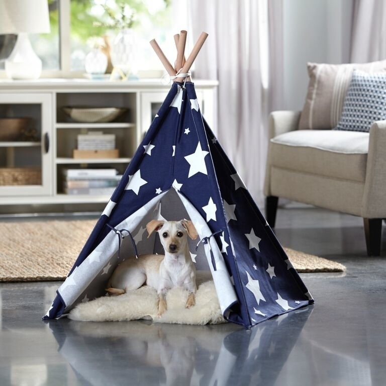 Tucker Murphy Pet Carly Teepee Dog Bed & Reviews | Wayfair With Regard To Carly Triangle Tables (Image 23 of 25)