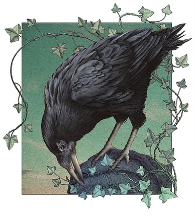 Alan Baker – Fantasy, Wildlife & Children's Book Illustrator Within Most Recent Raven Grey Tv Stands (View 14 of 25)
