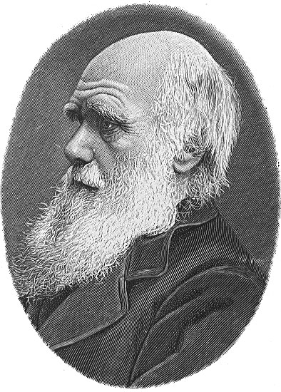 Newest Dixon White 84 Inch Tv Stands Throughout Charles Darwin – Wikiquote (View 24 of 25)