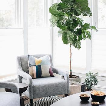Most Recently Released Lucy Cane Grey Wide Tv Stands Within Fiddle Leaf Fig – Transitional – Living Room – Elizabeth (View 10 of 15)