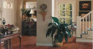 Complete Your Home with Home Decor Liquidators